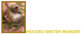 wooded winter wonder