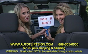 Autoflirt Sign