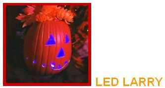 led larry